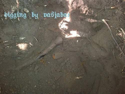 Brocēni-20120616-00007.jpg