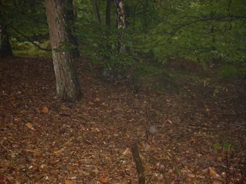 Arnhem 2005 068.jpg