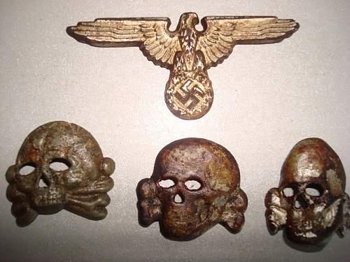 черепа и кура 1.JPG