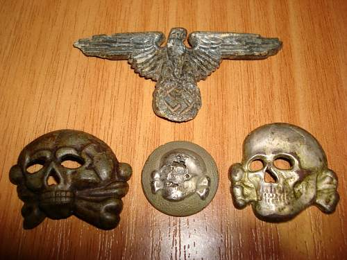 черепа и кура.JPG
