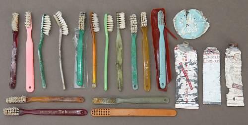 Snetterton Heath Toothbrush Collection WRF1200.jpg