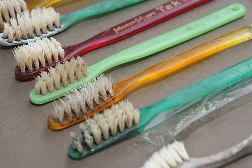 Toothbrush Bristles WRF1200.jpg