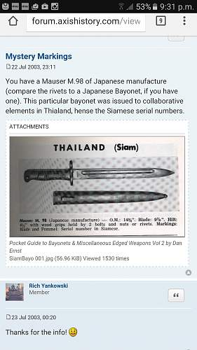 Unknown mauser bayonet??
