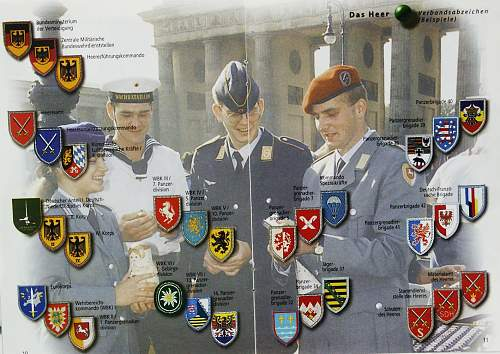 Click image for larger version.  Name:armshields.jpg Views:225 Size:185.4 KB ID:185998