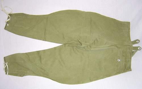 Trousers and shirt of the DAK.   original??