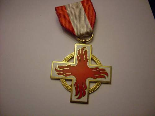 Click image for larger version.  Name:waf fire medal.JPG Views:16 Size:38.9 KB ID:649858