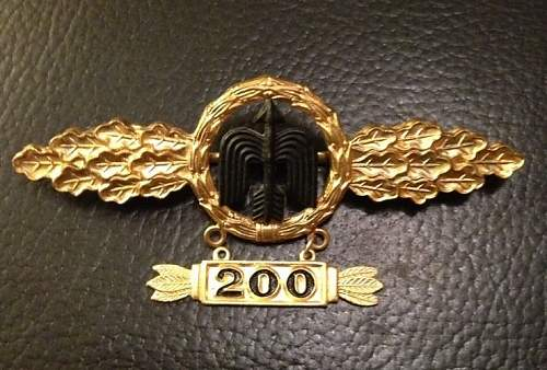 Click image for larger version.  Name:SCW pilots badge.1C.JPG Views:59 Size:76.1 KB ID:787075