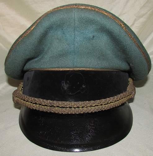 SS General Visor for R&C: