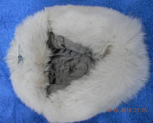 Click image for larger version.  Name:winter-cap4.jpg Views:83 Size:176.4 KB ID:157205