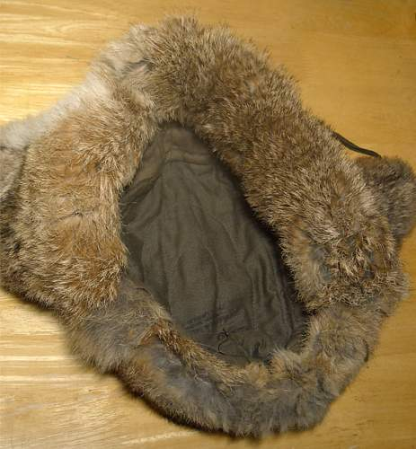 Click image for larger version.  Name:winter-fur-cap-in.jpg Views:149 Size:150.8 KB ID:181454