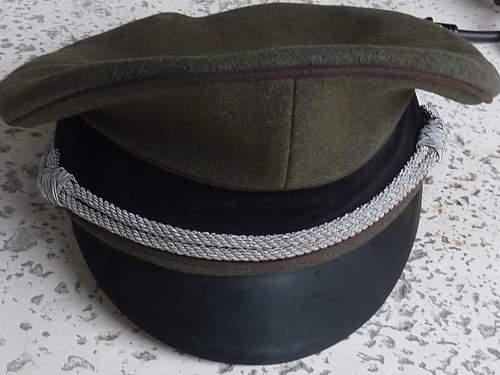 Click image for larger version.  Name:Officer Visor.jpg Views:98 Size:224.0 KB ID:306215