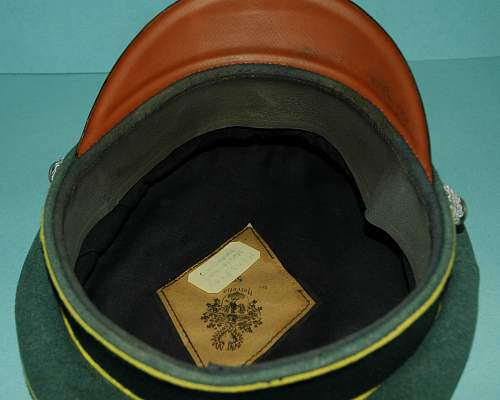 Heer Officers visor named good or bad?