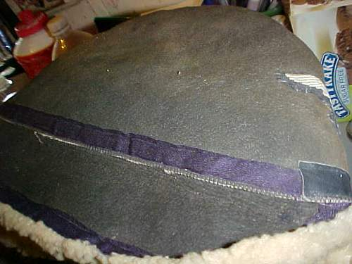 Luftwaffe winter hat with reversed insignia?