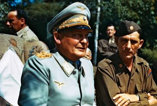 Luftwaffe reichs marshal herman goring's cap