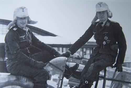 Need Help: Fur Lined Luftwaffe Winter Cap