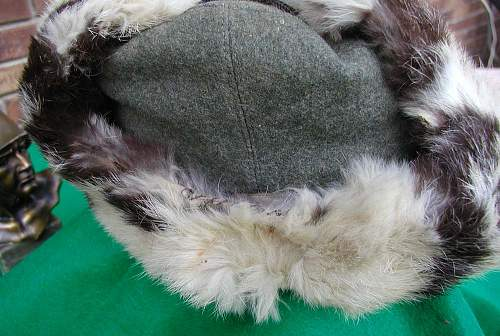 Opinions Please. Heer Winter Fur Cap.