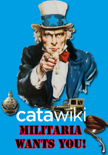 !!WANTED!! - General Militaria  Expert/Specialist