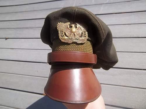 My new warrant officers crusher visor cap!