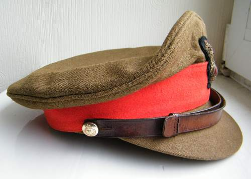Stripped Officers SD cap