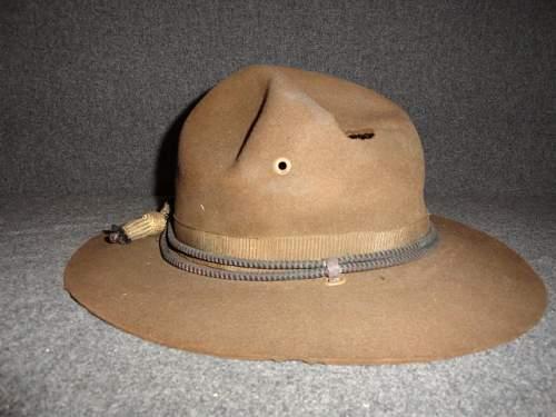 Us Campaign hat
