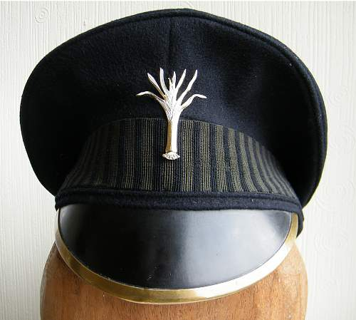 Click image for larger version.  Name:welsh guards cap 1.jpg Views:190 Size:212.6 KB ID:729993