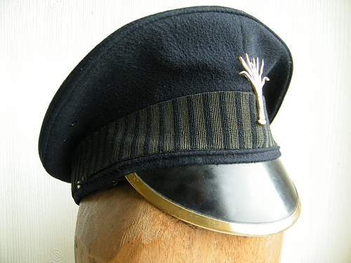 Click image for larger version.  Name:welsh guards cap 3.jpg Views:83 Size:222.9 KB ID:729995