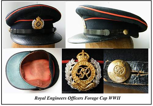 Click image for larger version.  Name:re forage cap a montage v2.jpg Views:55 Size:229.8 KB ID:746995