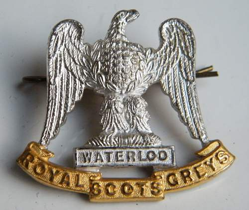 Click image for larger version.  Name:Royal Scots Greys officers S&G cap badge obverse.jpg Views:222 Size:211.0 KB ID:779383