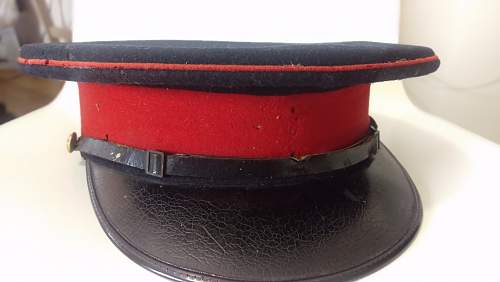 Unidentified Staff Officers Cap