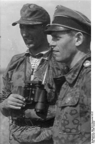 Click image for larger version.  Name:Bundesarchiv_Bild_101III-Bueschel-152-27,_Russland,_zwei_Angehörige_der_Waffen-SS.jpg Views:35 Size:46.2 KB ID:1009888