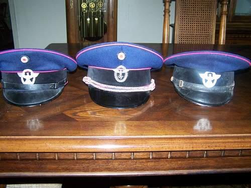 Fire police visors?