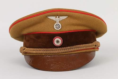an attractive NSDAP PL cap