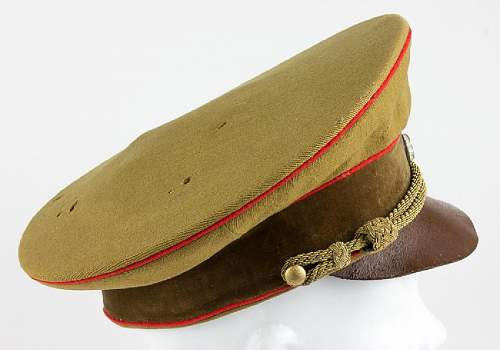 Form III Gauleitung visor for review and comments