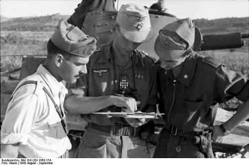 Click image for larger version.  Name:Bundesarchiv_Bild_101I-201-1563-17A,_Balkan,_deutsche_und_italienische_Soldaten.jpg Views:446 Size:50.2 KB ID:156354