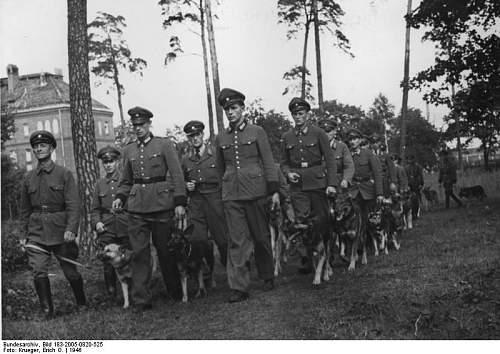 Click image for larger version.  Name:Bundesarchiv_Bild_183-2005-0820-525,_Berlin,_Polizei-Hundeschule_in_Tegel.jpg Views:283 Size:67.2 KB ID:156362