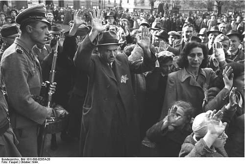Click image for larger version.  Name:Bundesarchiv_Bild_101I-680-8285A-26%2C_Budapest%2C_Festnahme_von_Juden.jpg Views:478 Size:61.5 KB ID:179942