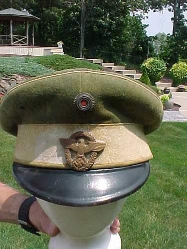 Police visor