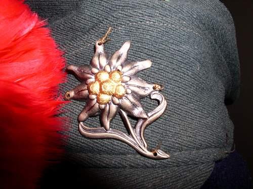 SS Mountain Troops cap?