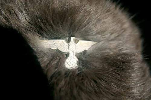Help with Info on German winter Fur Cap