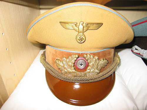 Post Your NSDAP Political Hats!