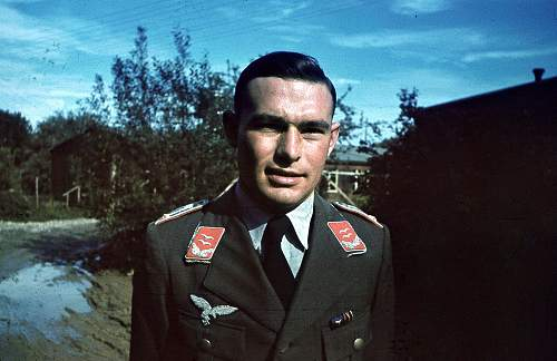 Click image for larger version.  Name:Luftwaffe Flak soldier in color (1).jpg Views:740 Size:156.1 KB ID:587690