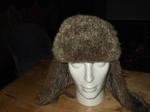 Click image for larger version.  Name:FUR 002.jpg Views:42 Size:192.5 KB ID:648569