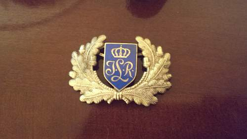 Visor emblem identification