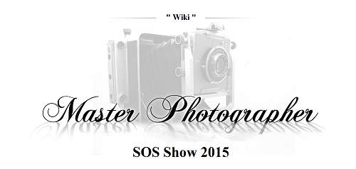Click image for larger version.  Name:Master_photographer_award.jpg Views:37 Size:133.9 KB ID:810062