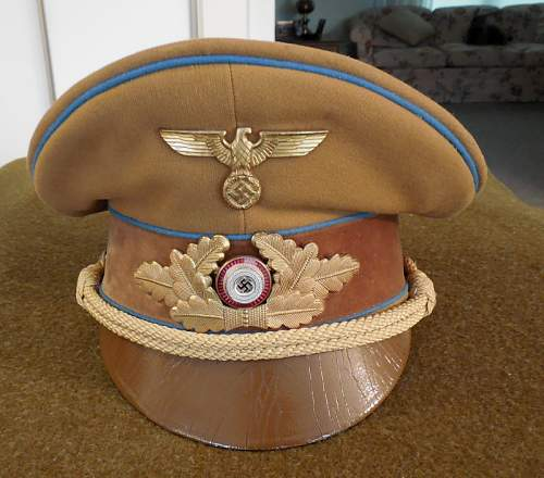 NSDAP visor for review