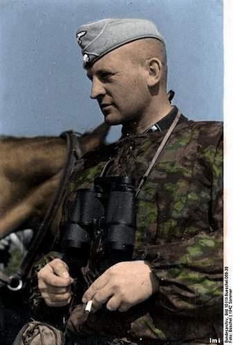 Click image for larger version.  Name:404px-Bundesarchiv_Bild_101III-Bueschel-069-38__Russland__F__hrer_der_Waffen-SS_1.jpg Views:33 Size:82.8 KB ID:991420