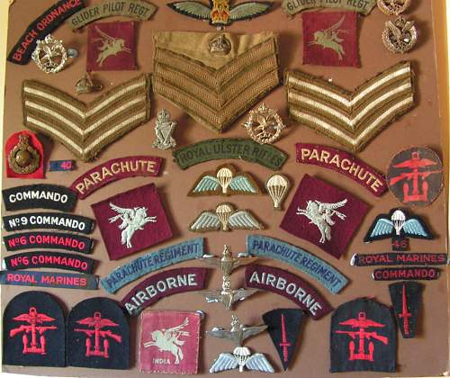 small collection of British special forces insignia