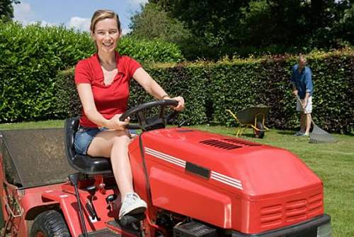 Click image for larger version.  Name:sitonlawnmower.jpg Views:59 Size:96.7 KB ID:239271