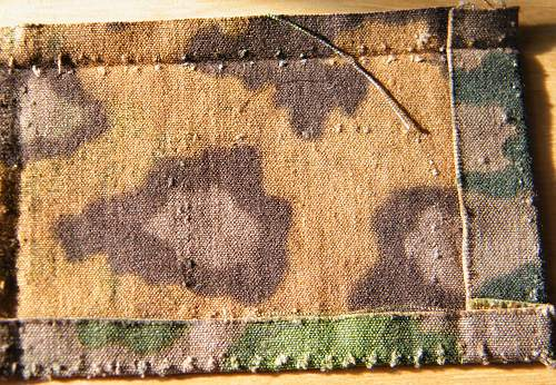 Click image for larger version.  Name:SS camo cloth autumn.jpg Views:55 Size:283.9 KB ID:264872