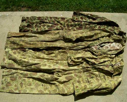 Click image for larger version.  Name:ArmyCamo01.jpg Views:40 Size:49.5 KB ID:353704